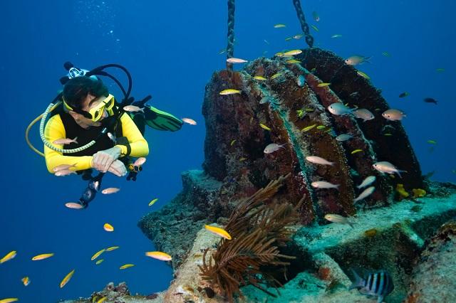 Arrecifes 2