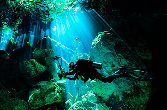 BUCEO-3